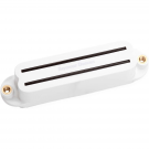 Seymour Duncan Pickups −  SHR 1n Hot Rails for Strat White