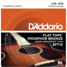 D'Addario EFT13 Flat Tops Phosphor Bronze Acoustic Guitar Strings Resophonic Guitar 16-56