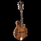 Barnes & Mullins BM650 Salvino F-style Mandolin