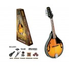 Bryden Teardrop Mandolin Pack in Tabacco Sunburst