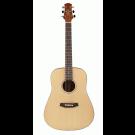 Ashton D20S Solid Top Acoustic Guitar