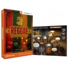 Toontrack Software Reggae EZX EZdrummer Expansion