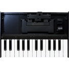 Roland K-25m Keyboard Unit For Roland Boutique