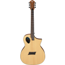 Michael Kelly - Acoustic Electric Guitar Forte Port