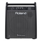 Roland PM200 - High-Resolution Drum Monitor