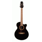 Ashton SL29/12CEQ WRS 12 String Acoustic Electric guitar