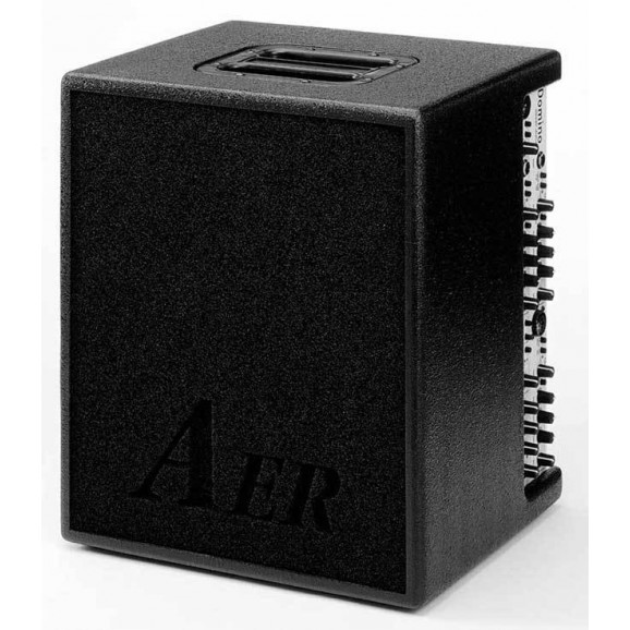 "AER ""Domino 2"" Acoustic Instrument Amplifier (100 Watt)"
