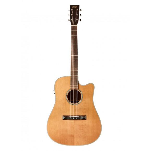 Tasman TA100-CE Cutaway Acoustic Electric Guitar with Case