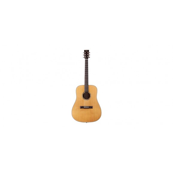 Tasman TA300-E Acoustic Electric Guitar with Case