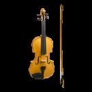Stentor Harlequin Series 3/4 Size Violin in Metallic Gold